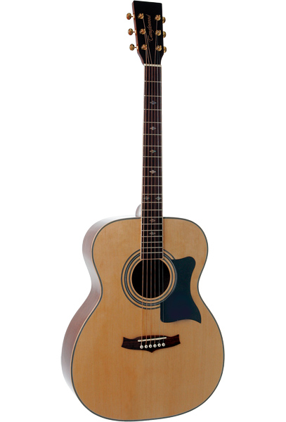 Tanglewood TW170-AS